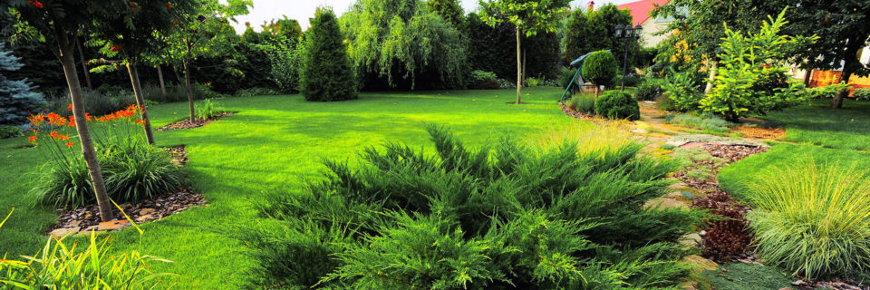 We provide landscaping services since 2004